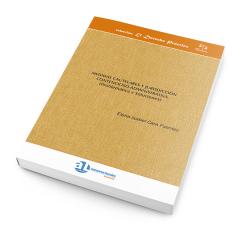 MEDIDAS CAUTELARES Y JURISDICCIÓN CONTENCIOSO - ADMINISTRATIVA (PROBLEMÁTICA Y SOLUCIONES)